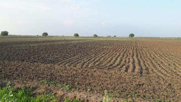 Agricultural/Farm Land for Sale in Vilathikulam, Thoothukudi