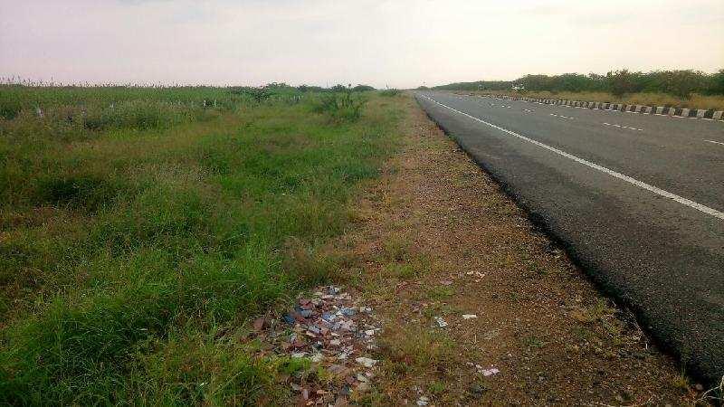 50 Acre Agricultural/Farm Land for Sale in Ettayapuram, Thoothukudi