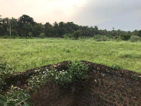 Agricultural/Farm Land for Sale in Kadayanallur, Tirunelveli