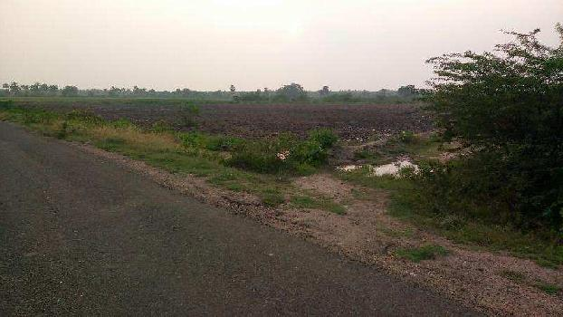 Agricultural/Farm Land for Sale in Srivilliputhur, Virudhunagar