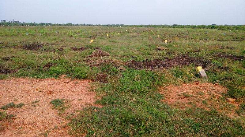 Agricultural/Farm Land for Sale in Srivilliputhur, Virudhunagar