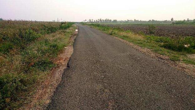 Agricultural/Farm Land for Sale in Thirumangalam, Madurai