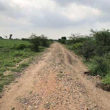 Agricultural/Farm Land for Sale in Thoothukudi