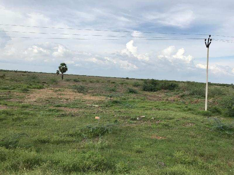 Agricultural/Farm Land for Sale in Kovilpatti, Thoothukudi