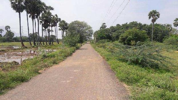 7 Acre Agricultural/Farm Land for Sale in Cheranmadevi, Tirunelveli