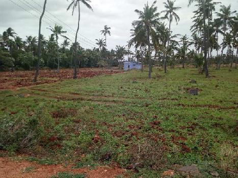 Www sanaabil agri formions