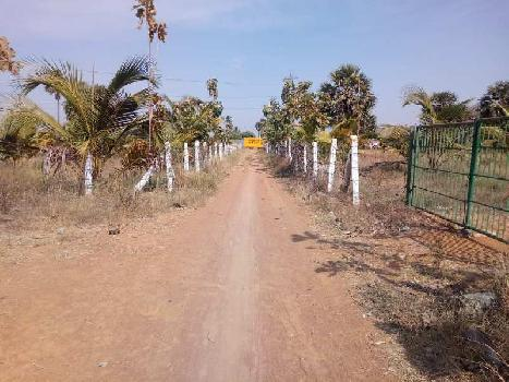 Agriculture Land For Sale In Near Melapalayam,Tirunelveli
