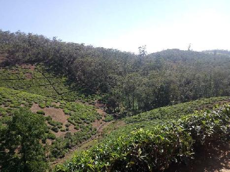 Agriculture Land For Sale In Udhagamandalam, Ooty