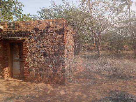 Agriculture Land For Sale In Sankarankovil, Tirunelveli