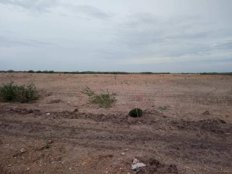 Agriculture Land For Sale In Ettayapuram