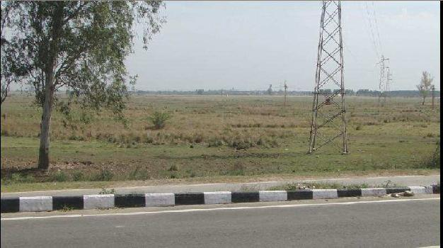 Agricultural/Farm Land for Sale in Rajpura
