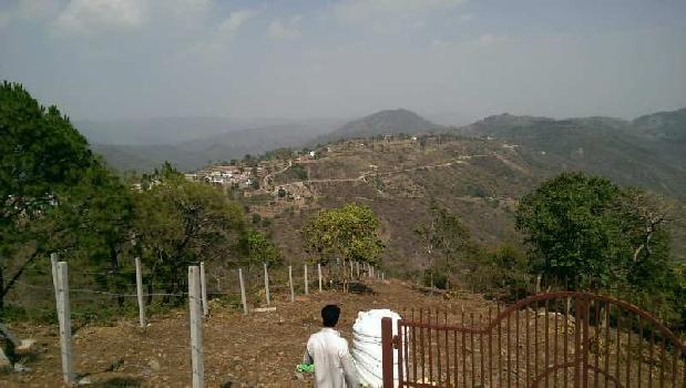 4 Bigha Agricultural/Farm Land for Sale in Morni, Panchkula
