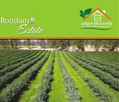 20000 Sq.ft. Agricultural/Farm Land for Sale in Roddam, Anantapur