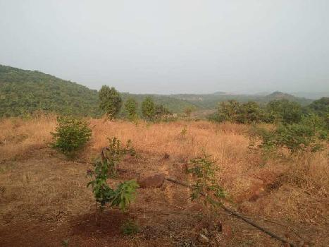 AVAILABLE FOR SALE.*  *8 Acres Agricultural Land.* *200 KMS. FROM  THANE.* *(Between Mandangadh & Dapoli)*