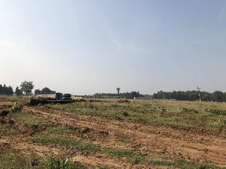 Land for selling agricultural