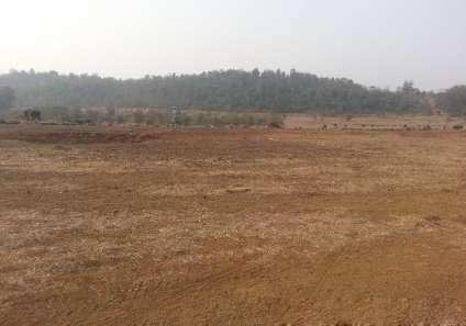 6 Bigha Residential Plot for Sale in Pali