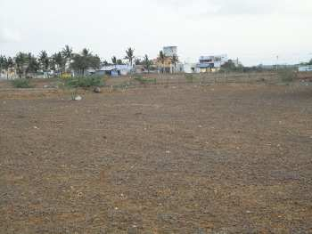 Residential Plot for Sale in Pali