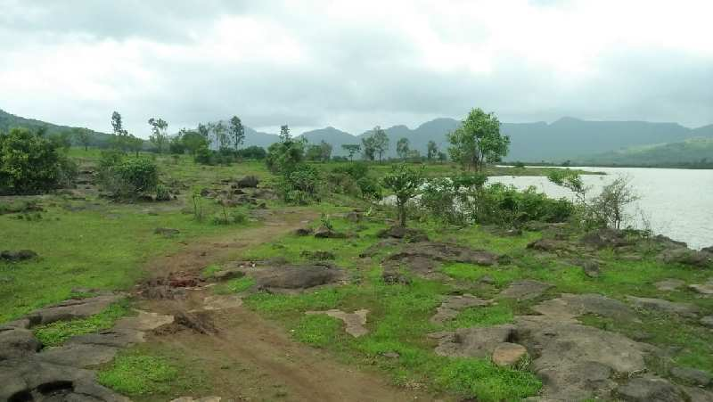 10 Acre Agricultural/Farm Land for Sale in Lonavala, Pune