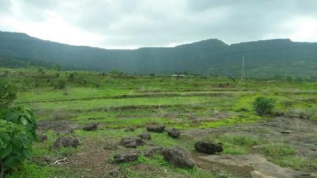 1900 Sq. Yards Residential Plot for Sale in Adajan, Surat