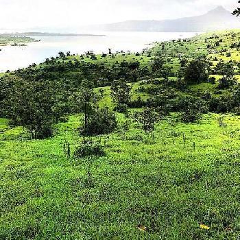 10 Acre Commercial Lands /Inst. Land for Sale in Lonavala, Pune