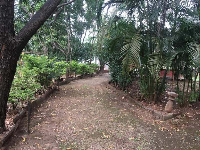 50 Guntha Agricultural/Farm Land for Sale in Varsoli, Pune