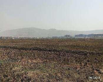 68.9 Guntha Residential Plot for Sale in Uran, Navi Mumbai