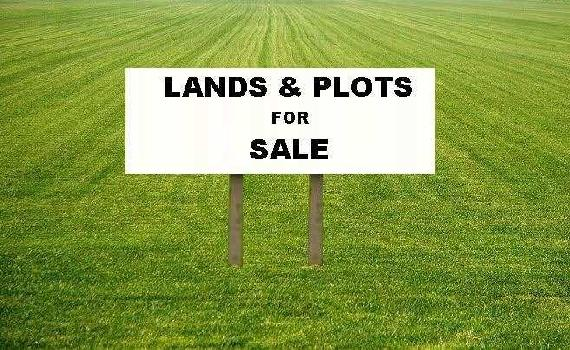 10000 Sq.ft. Residential Plot for Sale in Dadar East, Mumbai