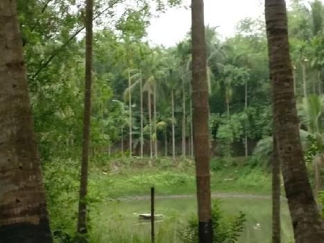 6 BHK Farm House for Sale in Champadali, Kolkata