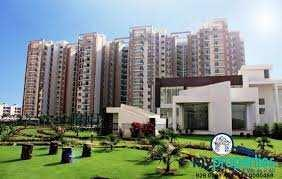 3 Bhk 1460 Flat Sqft for Sale in Royale Motia City