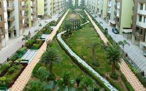 2 bhk 1307 sqft flat for rent in Maya Garden city