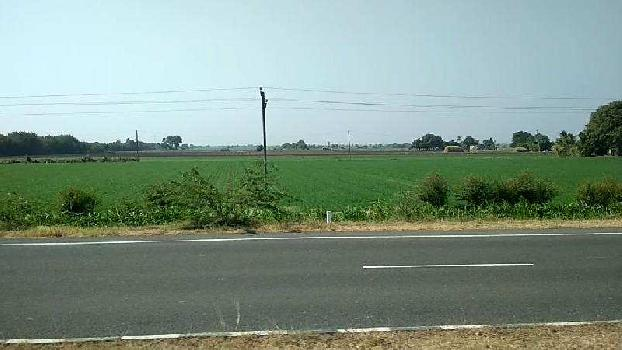 Agricultural/Farm Land for Sale in Keshod, Junagadh