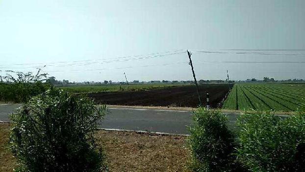 Agricultural/Farm Land for Sale in Keshod, Junagadh