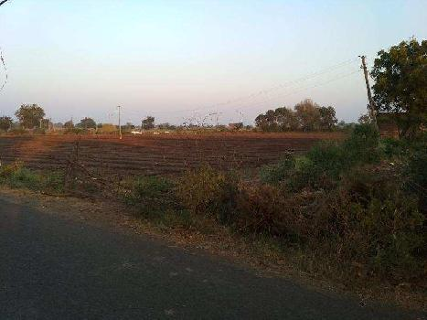 Agricultural/Farm Land for Sale in Kodinar, Gir Somnath
