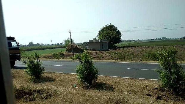 Agricultural/Farm Land for Sale in Kodinar, Gir Somnath