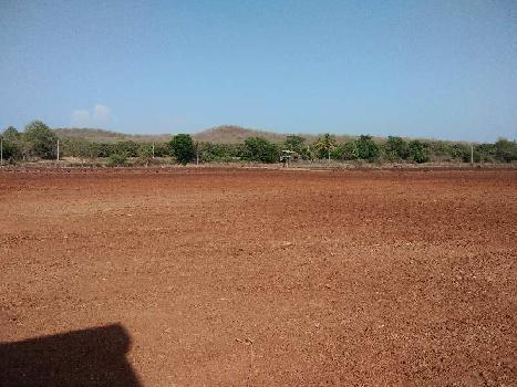 Agricultural/Farm Land for Sale in Haripur, Gir Somnath