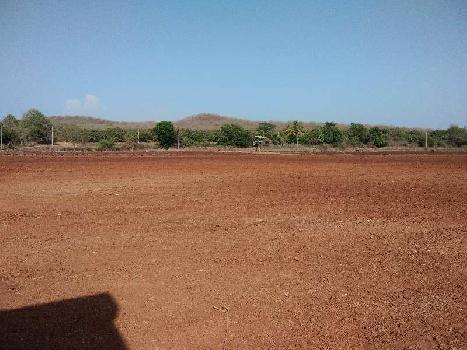 Agricultural/Farm Land for Sale in Haripur, Gir Somnath