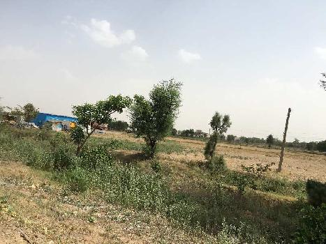 Agricultural/Farm Land for Sale in Dharuhera, Rewari