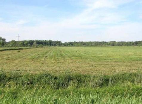 Agricultural/Farm Land for Sale in Rewari Rural, Rewari