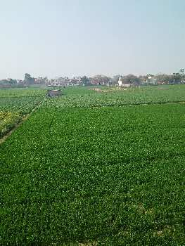 10 acres of land on N.H -8 for sale towwards Delhi - Jaipur side