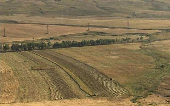 Agricultural land for sale in Rewari