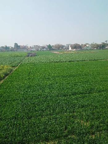 4.5 Acres of land is available for sale in Rewari