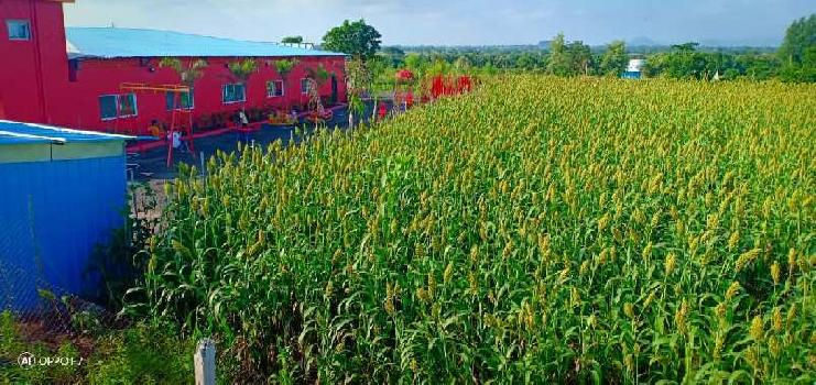 80 Acre Agricultural/Farm Land for Sale in Satana, Nashik