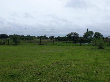 Residential plot in Dhanora