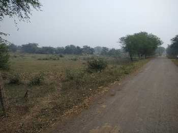 Agriculture Land In Batang Village