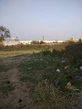 900 Sq.ft. Residential Plot for Sale in Changurabhata, Raipur