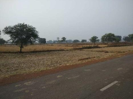 550 Sq.ft. Agricultural/Farm Land for Sale in Bhatagaon, Raipur