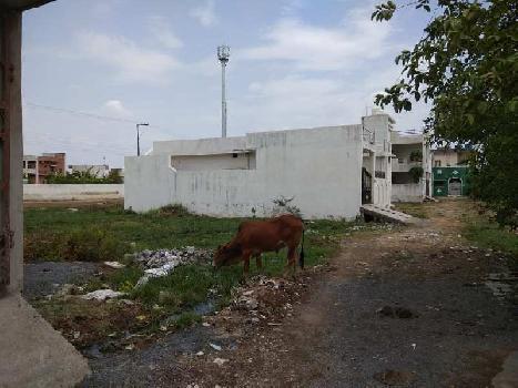 1620 Sq.ft. Residential Plot for Sale in Raipura Chowk Road, Raipur