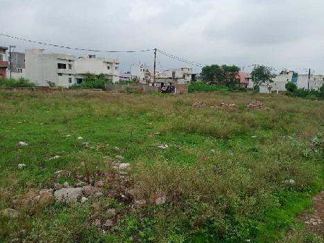 1000 Sq.ft. Residential Plot for Sale in Changurabhata, Raipur