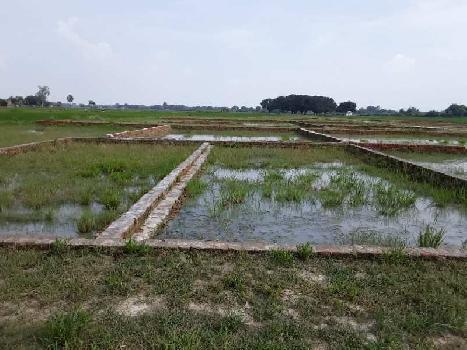 10000 Sq.ft. Residential Plot For Sale In Maharajganj, Ghazipur
