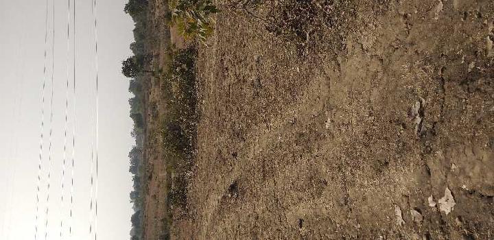 Villege manikpur tahsil chandiya distt umaria m. p.